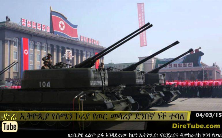 DireTube News – Ethiopia procures arms from North Korea