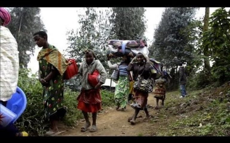 Situation calms after fighting on DR Congo-Rwanda border