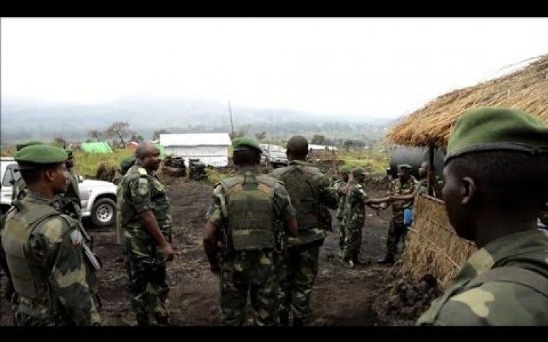 DR Congo, Rwanda, scrap over copse of trees