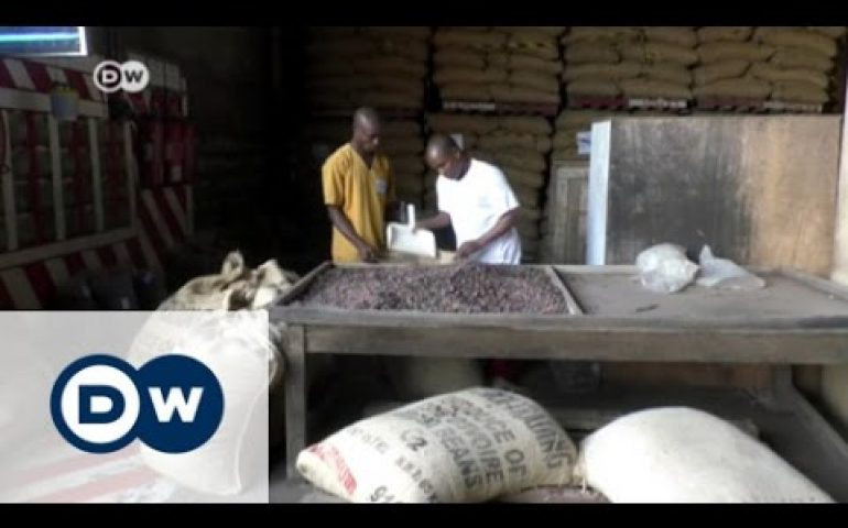 Chocolate made in Africa   DW News