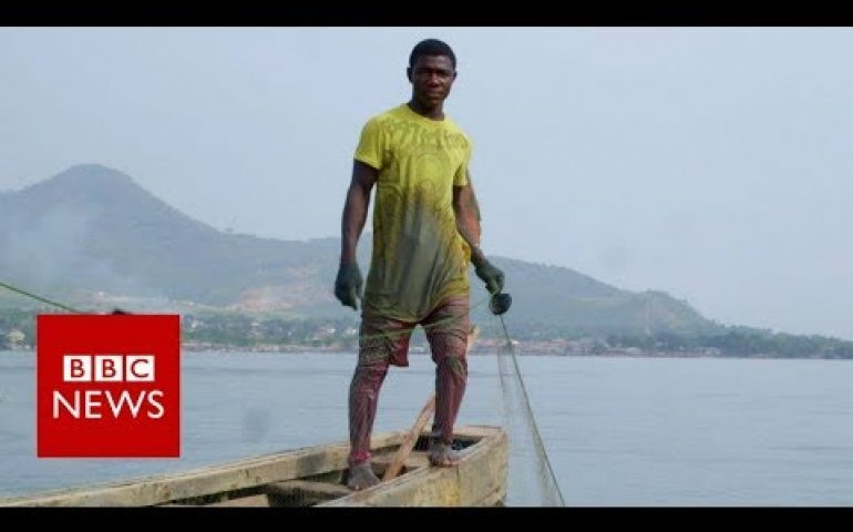 Is China's fishing fleet taking all of West Africa's fish? – BBC News