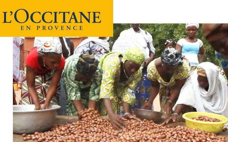 Fantastic Provence – Shea Butter: The Gold of Burkina Faso's Women | L'Occitane